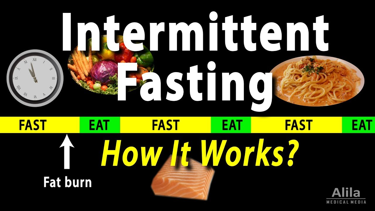 Intermittent Fasting – How it Works? Animation