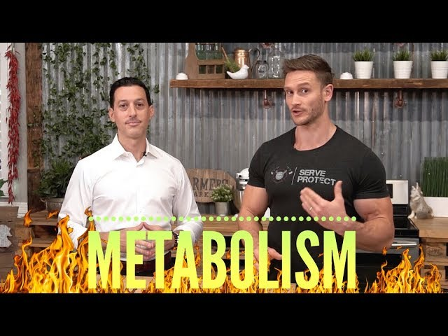 Intermittent Fasting: Can it Slow Down Your Metabolism? (w/ Dr. Cabral)